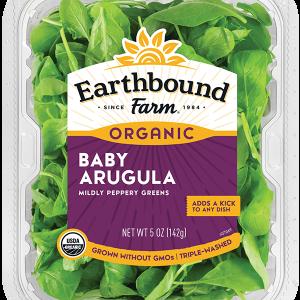 BabyArugula organic
