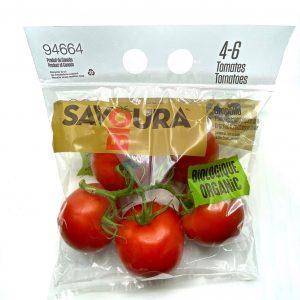 Organic Tomato Stem On The Vine